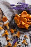 Свежая лисичка грибов на деревянной предпосылке Стоковое Фото