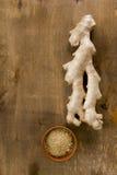 Свежая и земная специя корня имбиря Стоковое фото RF
