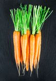 Свежая и сладостная морковь Стоковые Фото