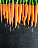 Свежая и сладостная морковь Стоковое Изображение