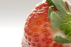 свежая клубника Стоковые Фото