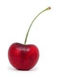 Свежая красная изолированная вишня Стоковое Изображение RF