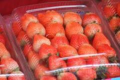 Свежая красная клубника в пластмассах упаковывать для продажи стоковое изображение rf
