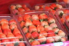 Свежая красная клубника в пластмассах упаковывать для продажи стоковое фото rf