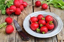 Свежая красная редиска для салата на деревянной предпосылке еда healty Стоковые Фото