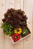 Свежая красочная коробка болгарского перца на деревянном столе Стоковое фото RF