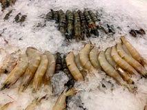 Свежая креветка в дисплее на рынке Стоковые Изображения
