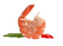 Свежая креветка изолированная на белой предпосылке Стоковая Фотография RF
