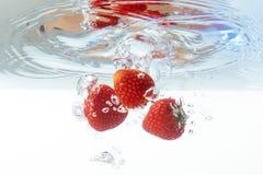Свежая клубника упала в воду с выплеском на белом backgro Стоковая Фотография RF