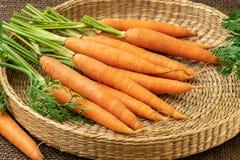 Свежая морковь, овощ корня стоковое фото rf