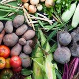 Свежая органическая здоровая еда, овощи detoxification сырцовые стоковая фотография