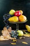 Свежая осень приносить - гранатовое дерево, груши, виноградины и яблоки Стоковые Фото
