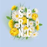 Свежая предпосылка весны с травой, одуванчиками и маргаритками Вектор, плакат, шаблон иллюстрация штока