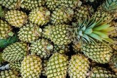 Свежая предпосылка ананасов стоковое изображение