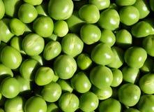 Свежая предпосылка зеленых горохов Стоковая Фотография