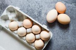 Свежая предпосылка яичек Стоковая Фотография RF