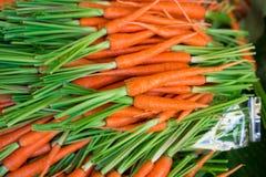 Свежая природа предпосылки морковей младенца Стоковое Изображение