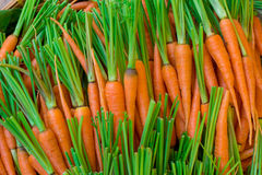 Свежая природа предпосылки морковей младенца Стоковые Изображения RF