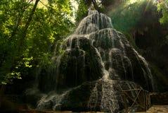 свежая природа Стоковые Изображения