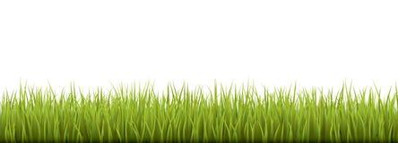 Свежая реалистическая зеленая трава - иллюстрация вектора Стоковое Изображение