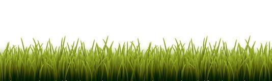 Свежая реалистическая зеленая трава - иллюстрация вектора Стоковые Фото