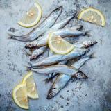 Свежая рыба Shishamo задвижки полно eggs плоское положение на затрапезном ба металла Стоковая Фотография RF