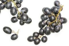 Свежая сырцовая черная виноградина изолированная на белизне Стоковое Изображение RF