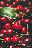 Свежая текстура сладостной вишни, обои и предпосылка, селективный фокус Стоковые Изображения RF