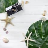Свежая тропическая предпосылка концепции перемещения с se листьев monstera стоковое фото