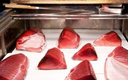 свежая туна Стоковое фото RF