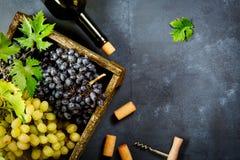 Свежая хлебоуборка виноградин стоковые фото