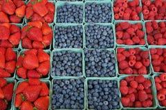 свежая ягод, котор росли органически стоковые фотографии rf