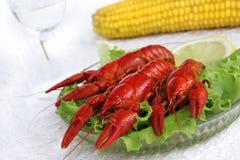 Свежее блюдо морепродуктов Стоковые Изображения RF