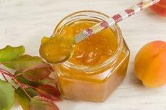 Свежее варенье плодоовощ абрикоса с листьями Стоковое фото RF