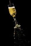 свежее вино Стоковая Фотография RF