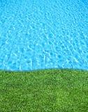 свежее заплывание бассеина травы Стоковые Изображения