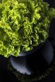 Свежее и курчавое зеленое letucce Стоковая Фотография