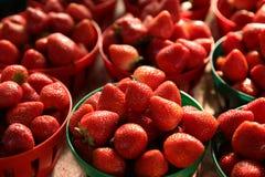 Свежее клубники красно- очень вкусное в корзине стоковые фотографии rf