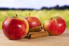 Свежее красное яблоко james горюет с полем позади Стоковые Изображения
