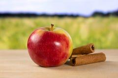 Свежее красное яблоко james горюет с полем позади Стоковые Изображения RF