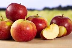 Свежее красное яблоко james горюет с полем позади Стоковая Фотография