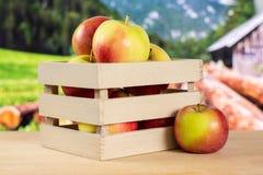 Свежее красное яблоко james горюет с природой страны Стоковое Изображение
