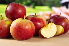 Свежее красное яблоко james горюет с природой страны Стоковая Фотография