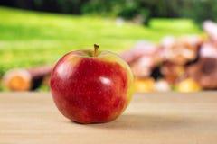 Свежее красное яблоко james горюет с природой страны Стоковое Фото