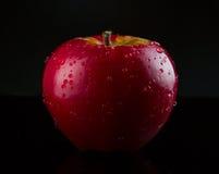 Красное, влажное яблоко на черноте Стоковые Фотографии RF