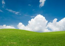 свежее лето ландшафта стоковое изображение rf