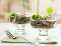 свежее лето салата Стоковое фото RF