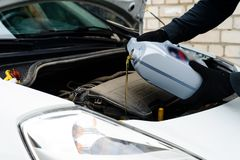 Свежее масло будучи политым во время изменения масла к двигателю автомобиля, конца Стоковые Фотографии RF