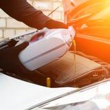 Свежее масло будучи политым во время изменения масла к двигателю автомобиля в луче Стоковое Изображение RF