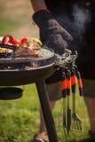 Свежее мясо и овощи на внешнем гриле Стоковая Фотография RF
